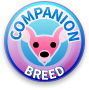 Companion Breeds